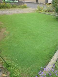その後の芝